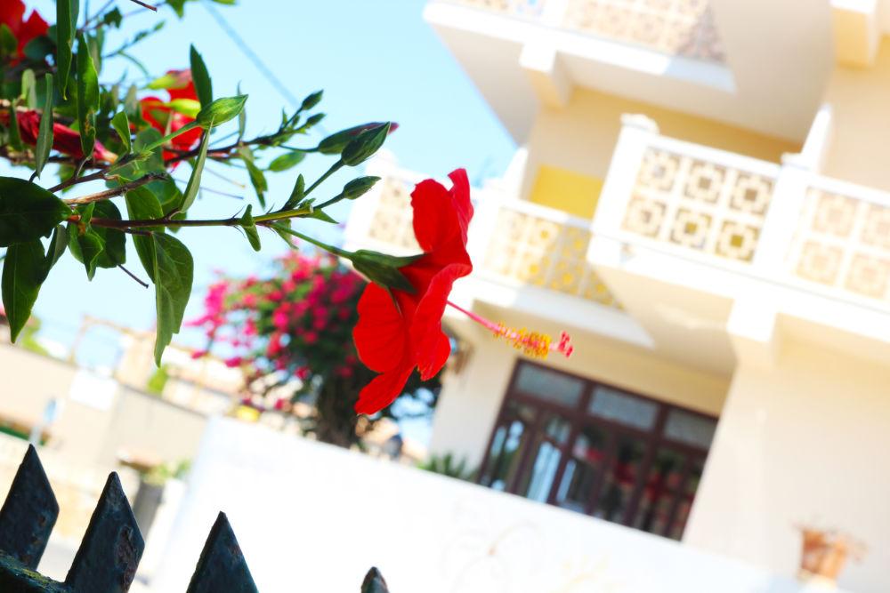 Impro-Hotel Casa Mallorca